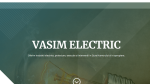 vasimelectric.ro - Realizare website